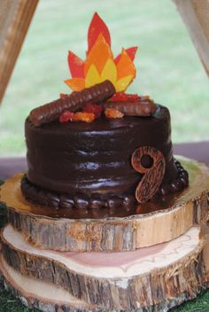 Campout Birthday Party cake!  See more party ideas at CatchMyParty.com!