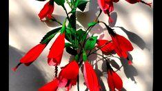 Paper Flowers Sleeping Hibiscus (Flower # 101)