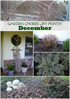 Garden chores for the month of December including the fruit and vegetable garden, flower garden, and basic lawn and yard care.