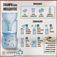 Trampa casera para mosquitos / Home made mosquito tramp Fee Du Logis, Desperate Housewives, Green Life, Cool Ideas, Home Hacks, Pest Control, Mosquito Control, Problem Solving, Housekeeping