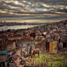 #istanbul (via #spinpicks)