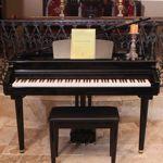 Suzuki DG-10 Digital Micro-Grand Piano Bundle