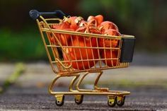 Report on Global Shopping Cart Market by Player, Region, Type, Application and Sales Channel - Radiant Insights Korea Shopping, Australia Shopping, China Shopping, Shopping In Italy, Canada Shopping, Shopping Day, Christmas Shopping, Retail Problems, Christian Christmas
