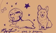 A work-in-progress;Corgis by Megan Lara | via Megan Lara: Art & Illustration #drawing