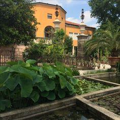 Padova, Padoue, Padova Orto Botanico
