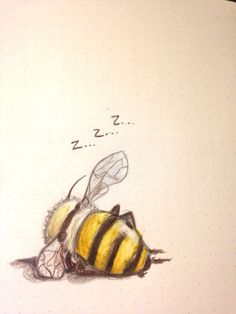 "schinkennudeln: ""Also my last drawing of 2016 was a bee taking a nap """
