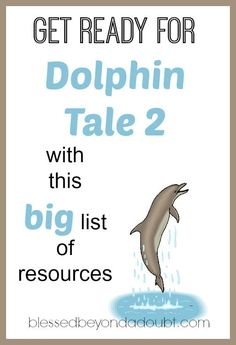 A big list of resources and ideas to get ready for Dolphin Tale 2!