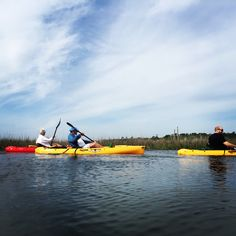 kayaking in the salt marshes of PawleysbIsland South Carolina is always a great time, especially in May! Call Surf the Earth and book a tour today!  Be sure to download the FREE Life in PI app and visit Life in PI on Facebook at www.facebook.com/LifeinPI and visit our website at www.LifeinPIapp.com!