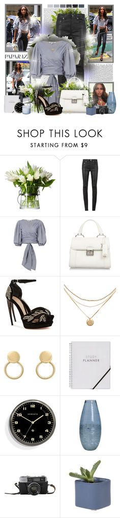 """Walk in The City"" by sheavschaaf on Polyvore featuring Yves Saint Laurent, Diane James, Miu Miu, Alexander McQueen, Newgate and Shoreline"