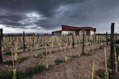 Bodega #Navarro #Correas (Agrelo, Luján de Cuyo, #Mendoza)