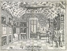 dell historia naturale, naples 1599/ gemeinfrei Great Chain Of Being, Cabinet Of Curiosities, Natural History Museum, Ancient Artifacts, Museum Collection, Art And Technology, Exotic Pets, Curiosity, Renaissance