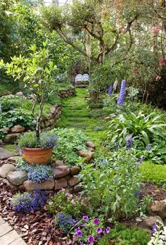 Garden and Home Garden Ideas, Home And Garden, Gardens, Gallery, Plants, Inspiration, Biblical Inspiration, Roof Rack, Outdoor Gardens