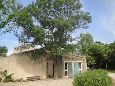Location vacances villa Cassis