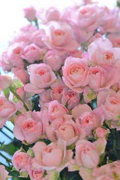 Beautiful Flowers Wallpapers, Beautiful Rose Flowers, Flowers Nature, Pretty Flowers, Flower Rose Images, Flower Pictures, Pink Roses, Pink Flowers, Rose Flower Wallpaper