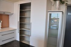 tall blind corner kitchen pantry - Google Search