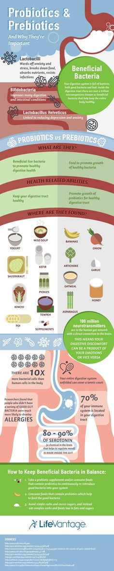 prebiotics and probiotics infographic