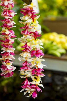 Pink and Yellow Leis (Hawaiian Luau In Hawaii) Flower Garland Wedding, Flower Garlands, Wedding Flowers, Flower Crowns, Diy Diwali Decorations, Flower Decorations, Leis, Mahalo Hawaii, Flower Lei
