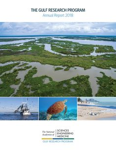 The Gulf Research Program Annual Report 2018 Continental Shelf, Environmental Studies, Book Table, National Academy, Academy Of Sciences, Gulf Of Mexico, Research, Catalog, Engineering