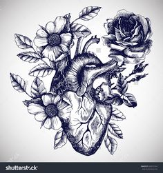 Blooming anatomical human heart. Vector hand drawn illustration in vintage style. Design for your tattoo, logo or other.