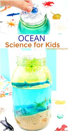 Ocean Science for Kids, An Easy Ocean Density Experiment for an Ocean Theme Unit Study, Under the Sea Preschool Activities and Preschool and Kindergarten Beach Science, Simple ocean activities for preschoolers in science with hands on activities Kindergarten Science Activities, Hands On Activities, Science For Kids, Preschool Crafts, Beach Theme Preschool, Summer Science, Science Experiments For Preschoolers, Beach Activities, Science Fun