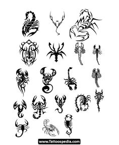 Scorpio%20Horoscope%20Tattoo%20Designs%2011 Scorpio Horoscope Tattoo Designs 11.jpg