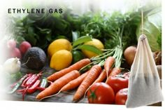 Smelleze® Ethylene Remover rids ethylene gas from vegetables, flowers & fruit. Stops premature ripening & retains freshness longer. Safe, reusable & last for years Fruit Flowers, Odor Remover, Growing Seeds, House Smells, Natural Deodorant, Fruit Recipes, Hydroponics, Food Grade, How To Remove