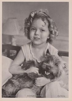 Dog actress Terry Spitz (Toto) got her start working with Shirley Temple, who coincidentally was MGM's  first choice to play Dorothy in The Wizard of Oz  (Photo Courtesy Stacey Ash)