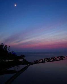 美しい雨の桜 金戒光明寺の春の彩り Japanese Landscape, Northern Lights, Celestial, Sunset, Nature, Travel, Outdoor, Beautiful, Outdoors