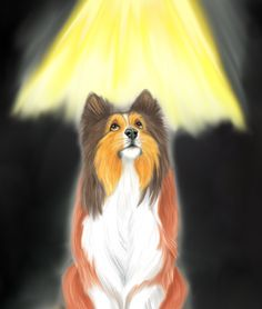 """A surreal moment for our hero Tristan in """"A Sheltie's Tale"""" by Len White Sheltie, My Drawings, Surrealism, Childrens Books, Things That Bounce, Whimsical, Bunny, Fox, Hero"""