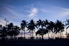 ハワイは本当に「住みやすいところ」なのか « クーリエ・ジャポンの現場から(編集部ブログ)
