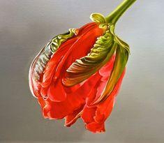 Mega Realistic Oil Paintings by Dutch Artist Tjalf Sparnaay DesignRulz. Tulip Painting, Plant Painting, Botanical Art, Botanical Illustration, Tjalf Sparnaay, Hyper Realistic Paintings, Art Through The Ages, Still Life Art, Dutch Artists