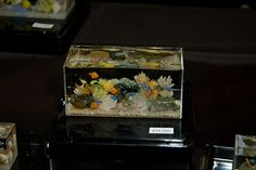 This is a 1/12 scale model fish tank  Made by Miyuki Kobayashi.