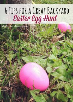 Young kids love a good treasure hunt. This Easter, host your own backyard Easter egg hunt.