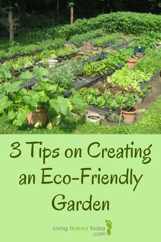 3 Tips on Creating an Eco-Friendly #Garden