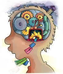 Más sobre aporte de neurociencias a la educación