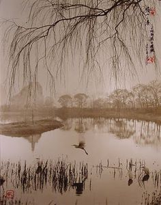 Photographs resembling traditional Chinese brush-painting by the late Dong Hong Oai