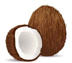 Coconut Vector stock photos and royalty-free images, vectors and illustrations Plant Based Nutrition, Vegan Nutrition, Nutrition Guide, Coconut Vector, One Green Planet, Food Clipart, Fruit Vector, Shape Posters, Green Monsters