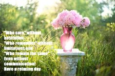 Best New York florist. offers fresh flower delivery New York. Save money by sending flowers directly with a Local Florist. Pink Peonies, Pink Flowers, Bouquet Flowers, Cut Flowers, Feng Shui, Pink Grass, Flowers Wallpaper, Good Morning Love Messages, Gardens