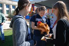 Annual FREE Cornucopia Festival at #UConn in Storrs, #Connecticut is Oct. 4, 2015. Visit the website for details about all the fun and informative events, booths and products. #agriculture #farming #chickens #horses #horticulture #pumpkins http://cornucopia.uconn.edu/