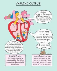 Mosbys Pathophysiology Memory NoteCards - Nursing Meme - cardiac output The post Mosbys Pathophysiology Memory NoteCards appeared first on Gag Dad. Medical Surgical Nursing, Cardiac Nursing, Pharmacology Nursing, Pathophysiology Nursing, Nursing Apps, Nursing Degree, Pediatric Nursing, Funny Nursing, Nursing School Notes