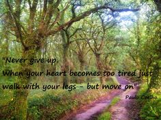 Benefits Of Walking, Never Give Up, Country Roads, Quotes, Paulo Coelho, Quotations, Quote, Shut Up Quotes