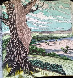 Tree By Joan Jackson