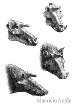 (19) @mdanuz/Zbrush / Twitter Prehistoric Wildlife, Prehistoric World, Prehistoric Creatures, Alien Creatures, Dinosaur Art, Fantasy Monster, Extinct Animals, Elements Of Art, Fauna