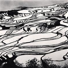 Yuanyang, Study 2, Yunnan, China — Michael Kenna, 2013