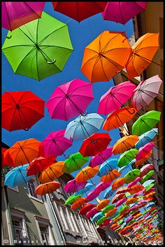 Umbrella Street in Agueda, Portugal Umbrella Street, Umbrella Art, Under My Umbrella, 80s Party Decorations, Motion Wallpapers, Colorful Umbrellas, Rainbow Connection, Rainbow Colors, Bunt