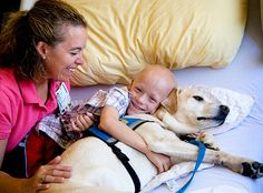 CareCredit Caring Communities | Canine Companions for Independence
