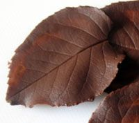 Chocolate leaves?  Yes, please.