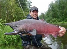 """Rivers and Salmon and Bears, Oh My! "" Ok the quote has been tweaked a little. However, everyone has had that hunting,or fishing trip that seemed more like a dream than a reality. If you haven't you need to go more, but that's a topic for another day. In today's article Field Staff Writer J. McFarland is one of those trips. Check it out at http://harvestingnature.com/2015/09/28/kings-on-the-fly-fishing-for-alaskas-most-sought-after-salmon/#more-2592"