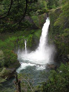 Huilo Huilo, southern Chile