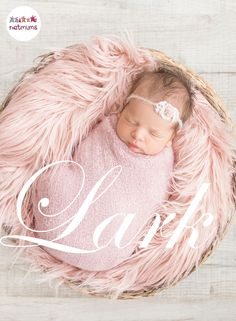 Names from nature are always a popular choice, but have you thought of naming your little bundle of joy after a pretty bird ? These bird themed baby names for both boys and girls will may give you some inspiration this spring.